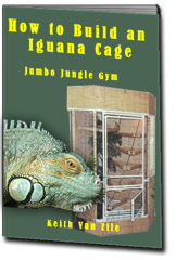 making a iguana habitat