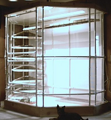 Indoor Iguana Cage How To Build An Indoor Iguana Cage Plans For