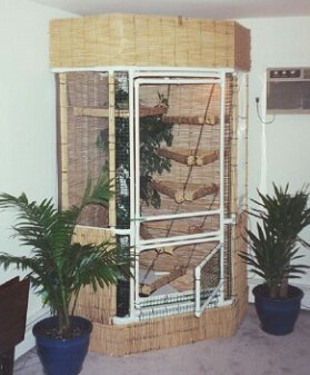How to build an indoor iguana cage - plans for building an iguana cage